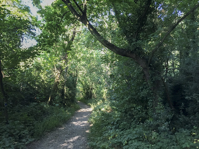 Walk round the Hawkwood Estate 26, 30 August 2016