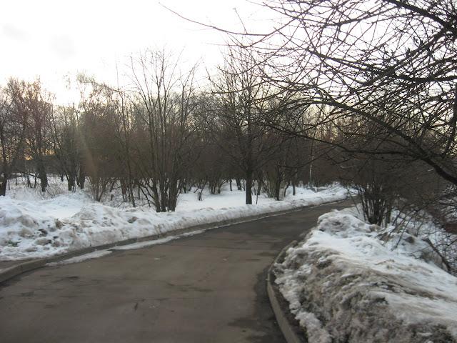 Парк недалеко от метро «Шоссе Энтузиастов»