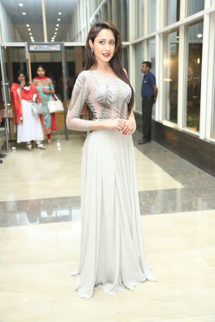 Pragya Jaiswal in Floor Length Ash Grey Pleated Gown at Inkokkadu Audio Launch