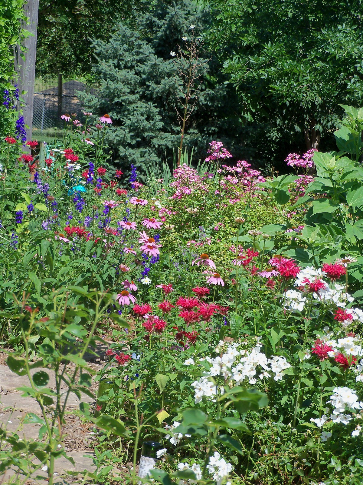 Beyond The Garden Gate: Repetition In The Garden