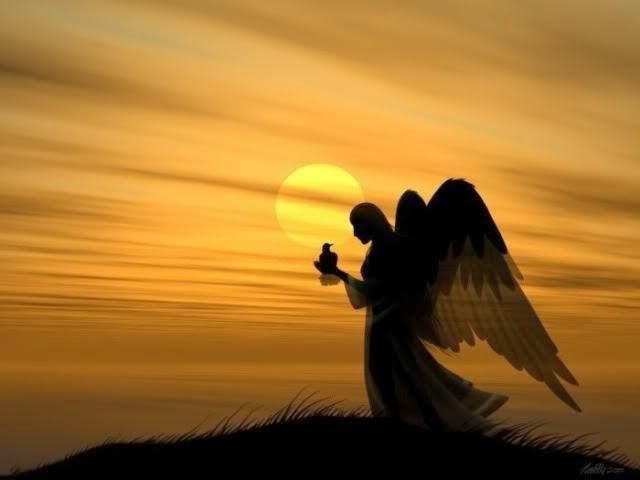 A Layman Looks at the Word What are Angels – Angels Announce the Birth of Jesus