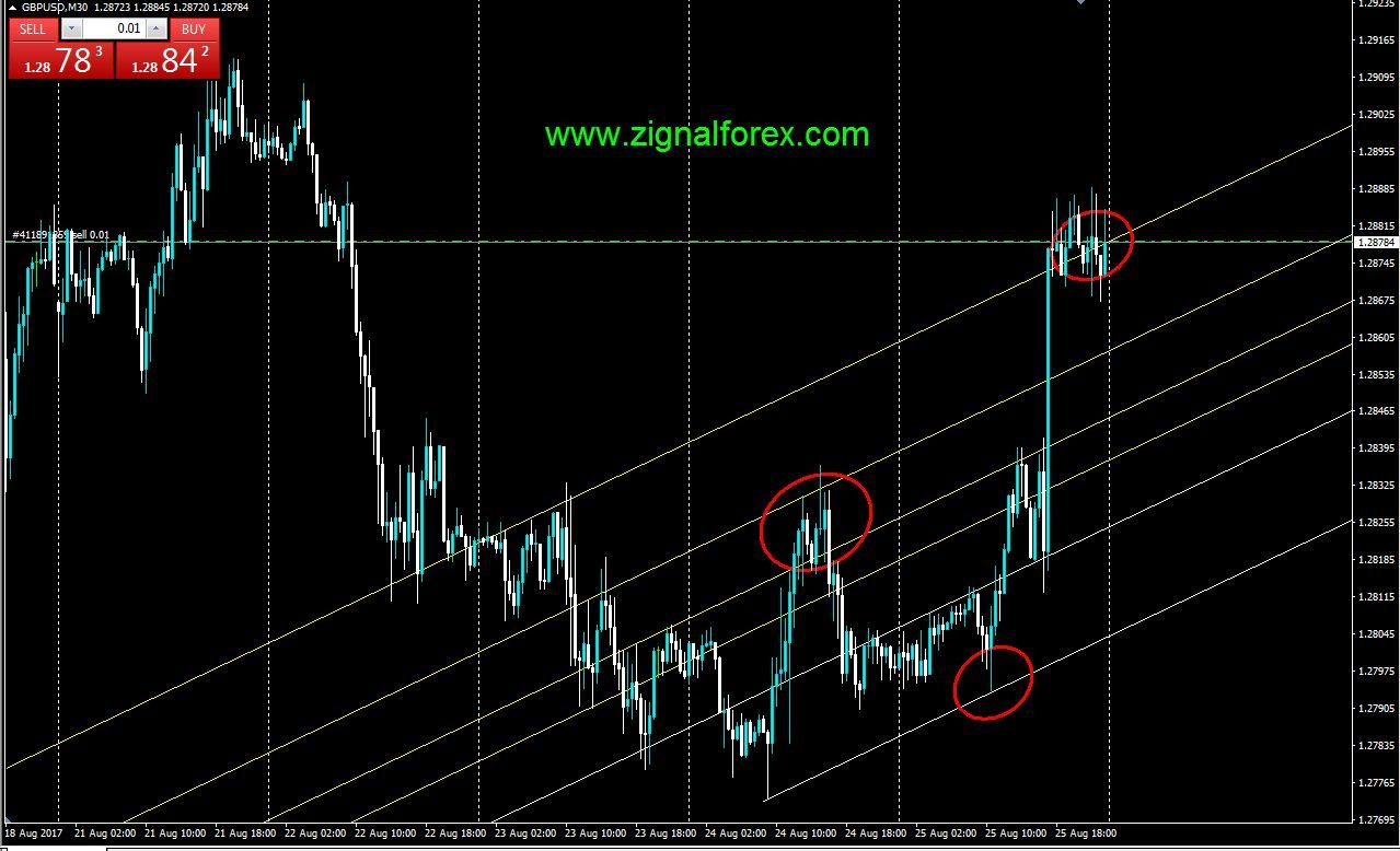Tentang forex trading