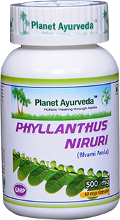 phyllanthus niruri, bhumi amla, capsules, bhumyamalaki