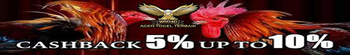 WSD4D