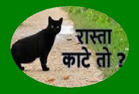 बिल्ली रास्ता काट दे तो वापस लौट जाना चाहिए, ऐसा क्यों? Billi ka rasta katna ashubh kyo mana jata hai?