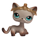 Littlest Pet Shop Multi Packs Cat Shorthair (#391) Pet