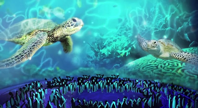 SeaWorld Orlando Turtle Trek 3D