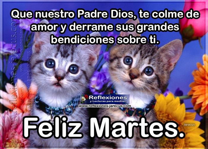Feliz martes, que nuestro Padre Dios, te colme de amor y derrame sus grandes bendiciones sobre ti.