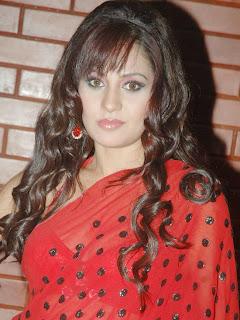 Liza Malik Saree 3