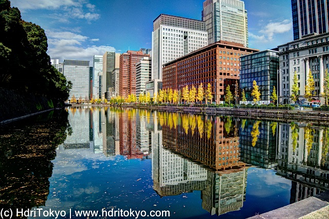 Hibiya moat and Marunouchi business area skyline. ginkgo trees along the moat have yellow leaves.
