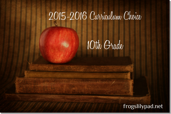Homeschool High School Curriculum Choice {Grade 10}
