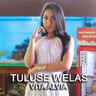 Lirik Lagu Vita Alvia - Tuluse Welas