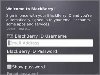 lupa password blackberry id