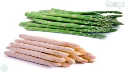 শতমুলী, Asparagus, نبات الهليون; 芦笋; Asperges; Spargel; शतावरी; asparagi; アスパラガス; спаржа; Espárragos; kuşkonmaz
