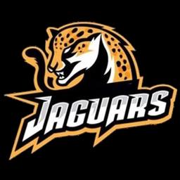 logo jaguar vector