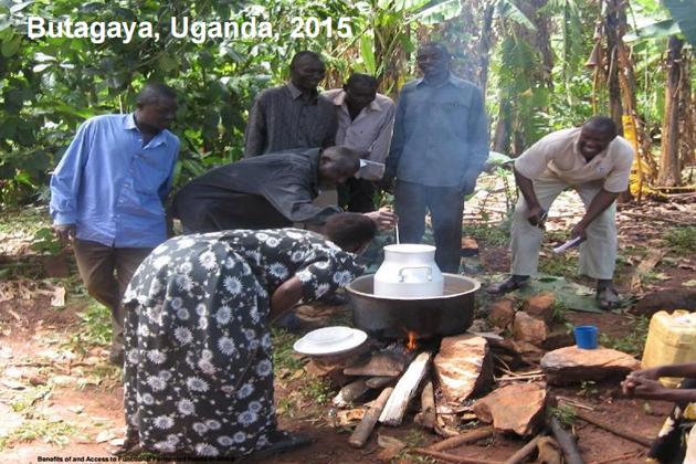 Yogures probióticos para mejorar la salud y el desarrollo del África 1
