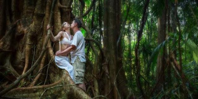 Cerita Sex Di Perkosa Di Hutan Sampe Robek