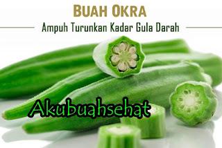 Informasi buah Okra