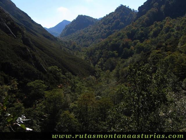 Ruta de los Arrudos y Corteguerón: Bosques casinos
