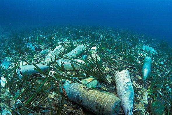 environment pollution animals - photo #24