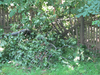 Fence damage from Derechogeddon 2012