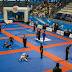 Como se preparar para uma competição de jiu jitsu