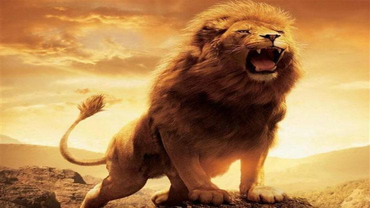 Ανακαλύφθηκε εξαφανισμένο λιοντάρι γίγαντας