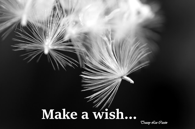 make a wish quote