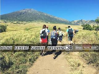 http://www.bromotravelagent.com/2018/08/mount-semeru-trekking-tour-package-3.html