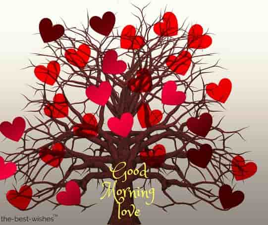 good morning image for whatsapp with heart tree