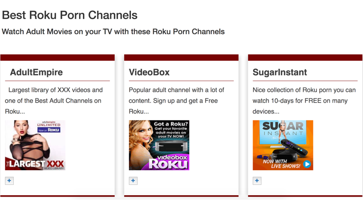 Best Roku Porn Channels