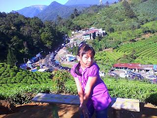 Tiket Masuk Taman Riung Gunung Puncak Bogor