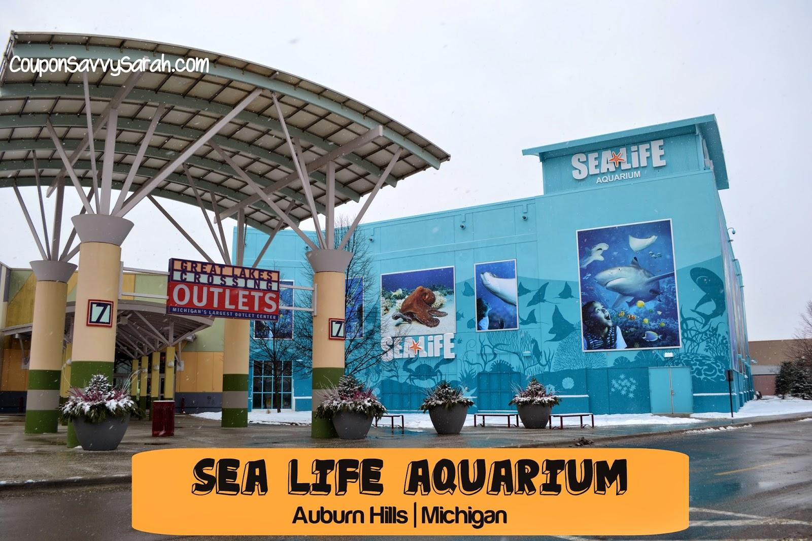 Sea life michigan coupons