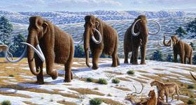 Cientificos estan a un paso de devolver la vida a los mamuts lanudos.