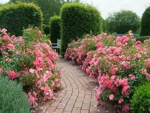 Garden Paths A Cool Charisma