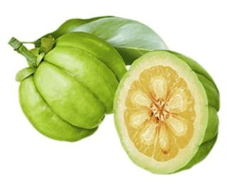 Quả bứa giảm cân- garcinia cambogia