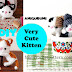 How to crochet a very cute kitten