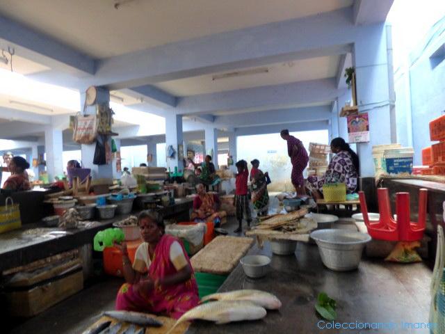 Mercado de Pondicherry