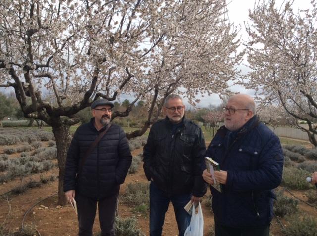 Asociaci n de la gente del haiku en albacete paseo for Jardin botanico castilla la mancha