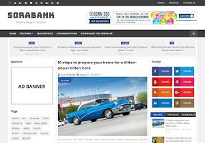 Sora Bank Blogger template responsive
