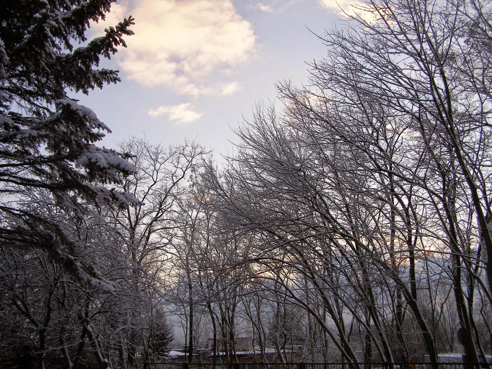 śnieg snow