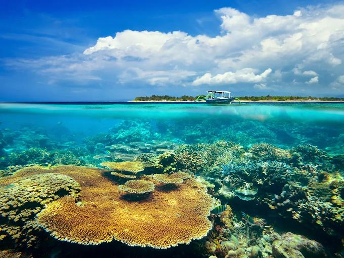 Backpackeran ke Lombok, Nggak Perlu Tunggu Low-Season Kalau Ada Bus AKAP