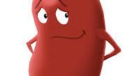 Ayurvedic medicine for kidney failure - Karma Ayurveda