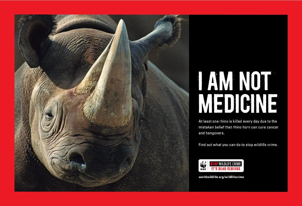 Brilliant Anti Poaching Campaign Phillip S Natural World