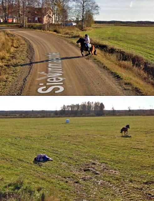 O cavalo ficou assustado com o carro do Google
