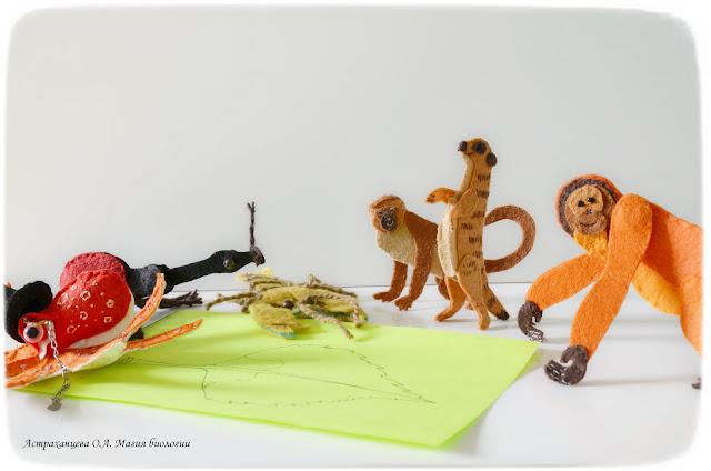 palchikovyj-teatr-orangutan-surikat-rak-berezovyj-list-osminog-martyshka-dolgonosik