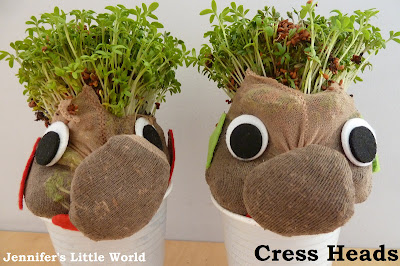 Cress heads craft
