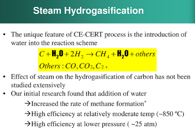 Steam Hydrogasification in a hydrogen environment