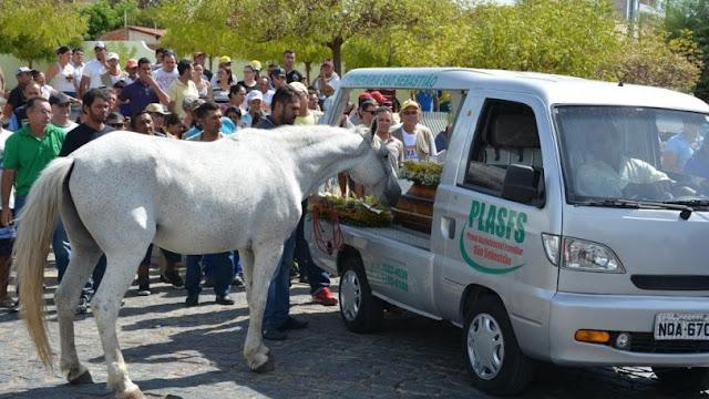 Πέθανε ο ιδιοκτήτης αυτού του αλόγου! Δείτε τι έκανε στην κηδεία μόλις είδε το φέρετρο του ιδιοκτήτη του! (ΦΩΤΟ)