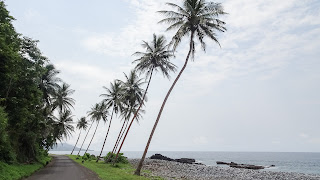Best self drive in Sao Tome